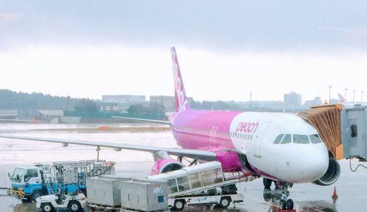 【LCCに恋して】0歳児とピーチ Peach aviationに乗ってみた!