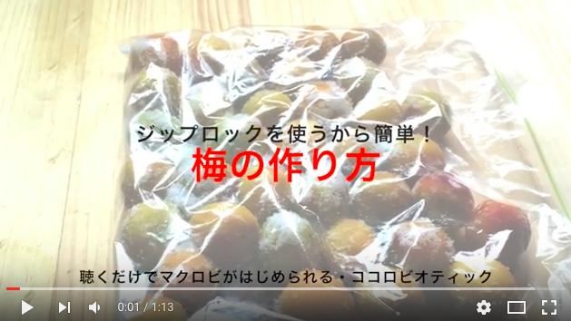 梅の作り方(梅しごと)youtube