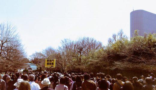 新宿御苑で花見をするなら?列に並ばずスムーズに入るには、大木戸門か千駄ヶ谷門へGO!