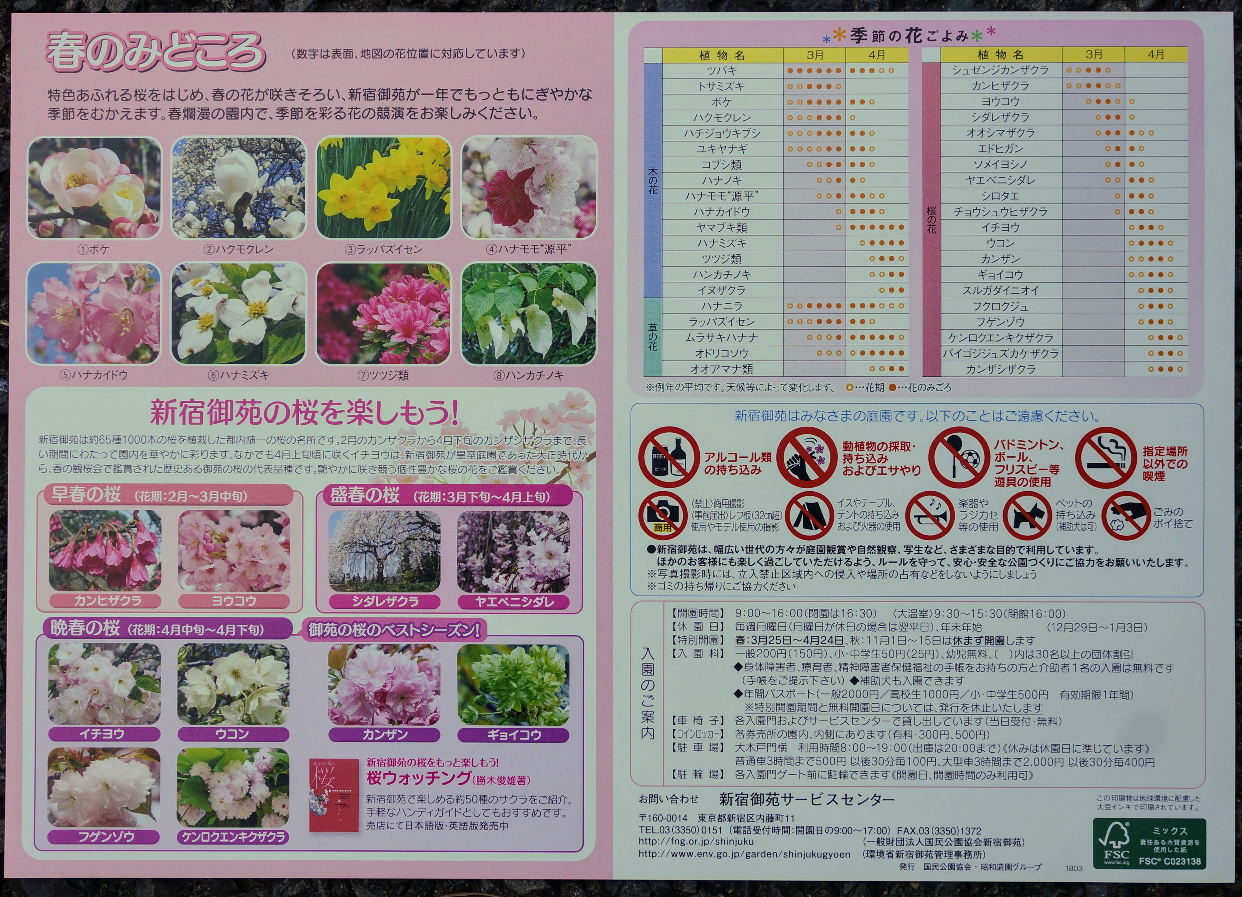 新宿御苑はお花見の見頃。お酒・アルコールは持ち込み不可。シートや飲食は可能