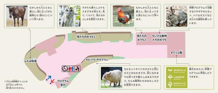 上野動物園の子供動物園「子ども動物園すてっぷ」