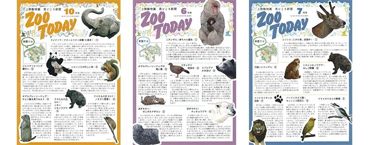 上野動物園見どころ新聞「ZOO TODAY」